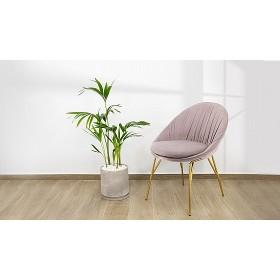 Бархатный стул ODEL - купить в Израиле