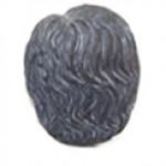 בעל שערות-שיבה1