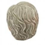 בעל שערות-שיבה2